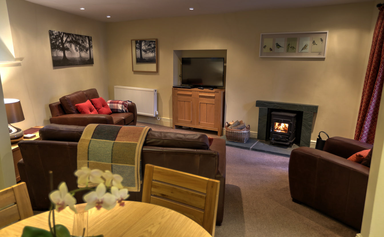 4 Townfoot Cottage, Elterwater Holiday Cottage - Lake District, Dog-friendly cosy cottage - Lounge with log burner and Lakeland light flooding in-sqz